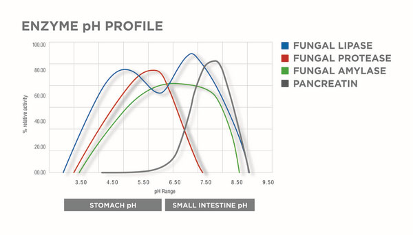 Enzyme pH profile